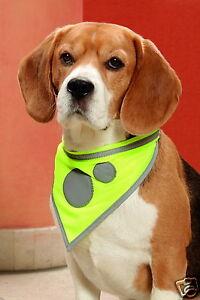 Sicherheitshalstuch reflektierend Leuchthalsband Hundehalstuch K16068
