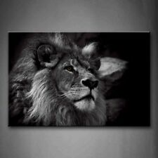 Framed Black And White Lion Head Portrait Canvas Print Wall Art Painting Picture