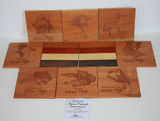 10 Laser Etched Wooden Coasters Jungle Animals Cats Birds Belize Stork Macaw