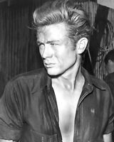 JAMES DEAN 8X10 GLOSSY PHOTO PICTURE IMAGE #7