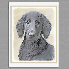 6 Flat-Coated Retriever Dog Blank Art Note Greeting Cards