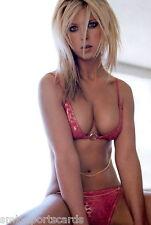 actress TARA REID sexy busty bikini 4x6 glossy photo ~ candid #3