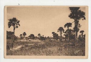 Dakar Senegal Village Indigene Vintage Postcard US047