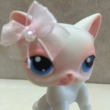 LPS Littlest Pet Shop #64 White Shorthair Cat - USA seller 9 pictures SHIPS FREE