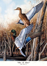 LOW COUNTRY WOODDUCKS 18x26 L//E S//N WATERFOWL LITHOGRAPH JAMES PARTEE ART