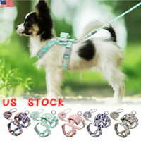 Floral Soft Dog Harness And Lead Set For Chihuahua Pomeranians Puppy Rabbit Cat