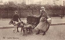 CPA - BELGIQUE - Attelage de chiens - Laitière flamande.