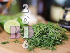 Ajedrea-Hierba Seeds-chubritsa-Aprox 2500 Semillas Embalaje Original _ 79