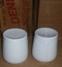 Vintage Johnson Bros Salt and Pepper Shaker Focus Pattern Made in England