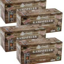 Favorit NEU 1212 4 er Set Kaminfeuer Favorit Jumbo-Zünder 10 kg