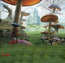 10X10FT Alice World Vinyl backdrop Photography Prop Studio Photo Background YL08