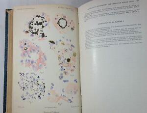 Annales de DERMATOLOGIE et de SYPHILIGRAPHIE 1909 et 1911 planches couleurs RARE