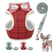Soft Air Mesh Small Pet Dog Cat Harness & Leash Set Gentle Bowtie Harness Vest