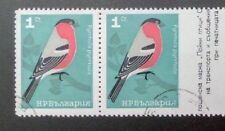 BULGARIA 1965 SONG BIRDS, 1 ST. ERROR, IMPERFORATE RIGHT, PAIR, CANCELLED