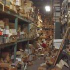 ⭐️ STAMPS COLLECTION Kiloware Lot 100 Worldwide Timbres Briefmarken Francobolli