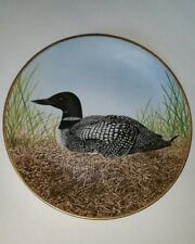 Waterbird Plate by Danbury Great Northern Diver by Eric Tenney