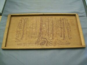 Giant Redwoods Of California Redwood Serving Tray