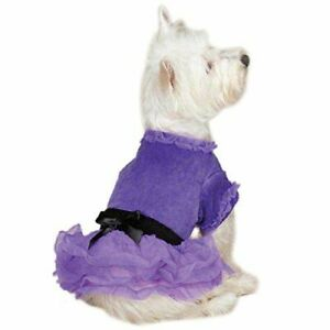 "NWT Zack & Zoey Dog Puppy Vibrant Party Dress Violet Black Satin Bow 8"" XXS"
