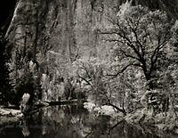 1939/72 Vintage ANSEL ADAMS Yosemite Forest Cliff Lake Landscape Photo Art 11X14