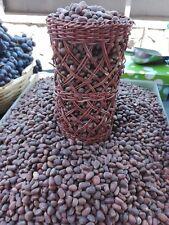 Cedar pine nut kernel Natural Seeds Siberian New Harvest 1 pound 450 gr. 2018