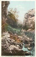 Winslow Arizona~Detroit Publishing #12916 Little Colorado Canyon~1907 Postcard