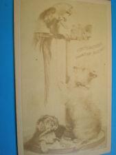 Cdv old photograph parrot dogs album filler card c1870s R 31AA6