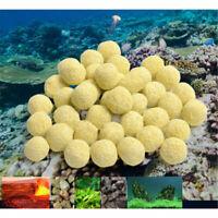 100g 25mm Aquarium Porous Media Ceramic Filter Biological Ball Fish Tank Supply
