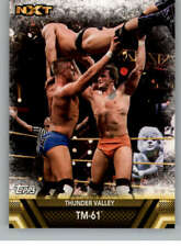 2017 Topps WWE Then Now Forever Finishers and Signature Moves Pick From List