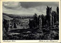 LÜNEBURG Heide AK Postkarte um 1940 Topographie Blick Totengrund alte Postkarte
