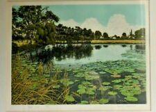 Graham Evernden Ltd Edition Print 167/350 Cloud Lilies Etching Aquatint