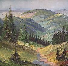 Hübsches Ölgemälde Landschaft Im Schwarzwald signiert