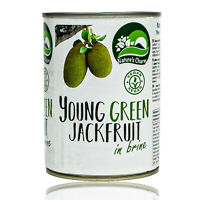 Nature's Charm - Jackfruit in Salzlake eingelegt 565g Dose - Original Jackfrucht