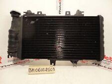 Radiatore acqua Water Radiator Kuhlerlufter Bmw F 700 Gs 12 15