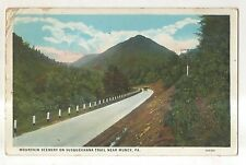 Mountain Scenery, Susquehanna Trail MUNCY PA Vintage Lycoming County Postcard