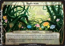 Eloren Wilds // Presque comme neuf // Planechase // Engl. // Magic the Gathering