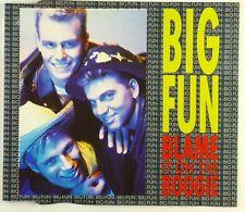 CD Maxi-Big Fun-chiamerei it on the Boogie-a4224