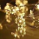 30x Garden Flower Warm White LED Hanging String Lights Bedroom Mood Lighting