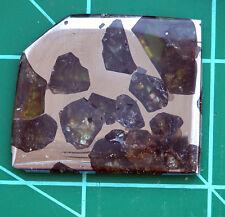 Esquel Meteorite 16.51g Stony-iron, Pallasite