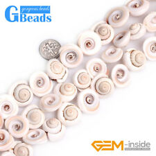 """17mm Conch Natural Sea Shell Beads for Jewelry Making Strand 15"""" Free Shipping"""