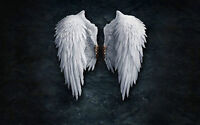Framed Print - Pure White Gothic Feather Angel Wings (Picture Poster Bible Art)