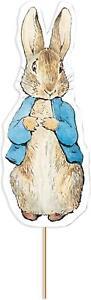 Peter Rabbit Double Sided Cake Topper Pick Cake Topper Celebration Decoration