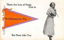 """""""There Are Lots of Pretty Girls"""" in Williamson Pennsylvania~1914 Pennant PC"""