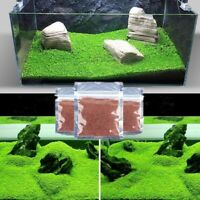 Aquarium Seeds Grass Fish Tank Foreground Plant Carpet Grow Water Glossostigma