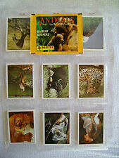 Panini: Tiere aus aller Welt, kompletter Stickersatz, toprar von 1990 !!!