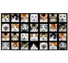 "Adorable Pets Kitty Cat Face Black Cotton Fabric Elizabeths Studio 24""X44"" Panel"
