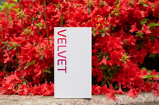 "Brand New Factory Unlocked LG Velvet LM-G900N 6.8"" OLED Display 5G 8GB 128GB"