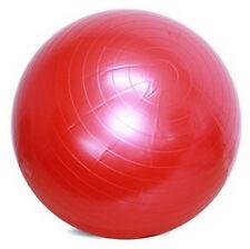 ANTI-BURST BALL Exercise 55cm Inflatable Physio Balance Yoga Fitness Gym PE 9555
