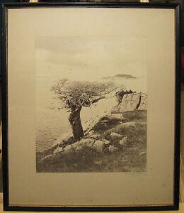 Rare 1896 Martha Hale Harvey Photograph of Cape Ann Island Listed Artist