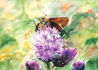 Kunst Druck Aquarell Distel Schmetterling Natur Recyclingpapier A4 Studio Sterna