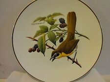 """Yellow-Breasted Chat . North American Songbird Plate Large 10-1/4"""" Plate"""